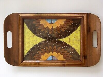 Beautiful Art Deco REAL Butterfly Wings Inlaid Wood Tray