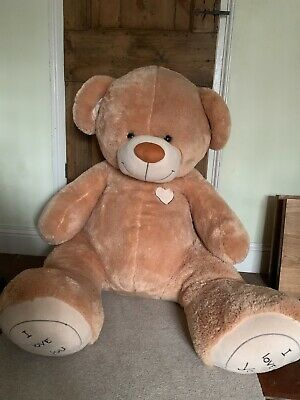 Giant valentines teddy bear with 'I Love You' Paws