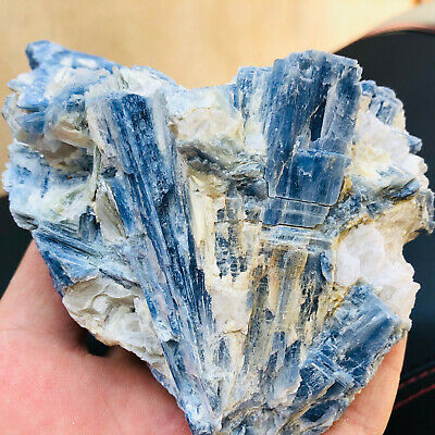 1.12LB wonderful blue Cyanite Kyanite crystals from Brazil minerals specimens!