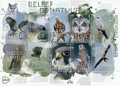 Netherlands Stamps 2020 MNH Birds of Prey & Owls Experience Nature 10v M/S