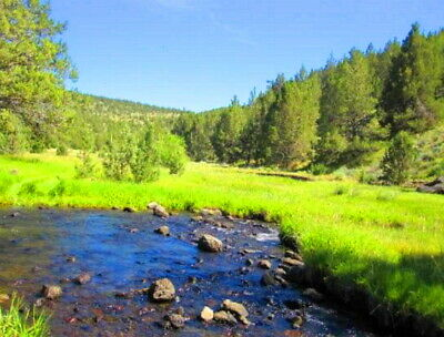 LIVING NATURE WILDERNESS One-acre DREAM LAND MODOC COUNTY