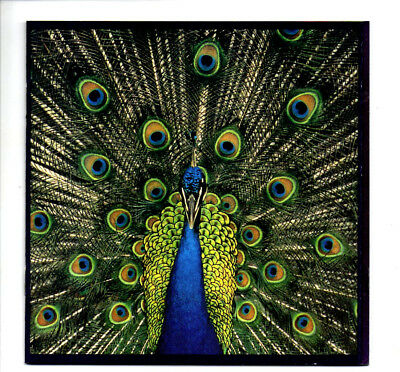 The Bluetones - Expecting to Fly (CD 2003)