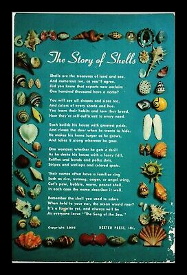 Dr Jim Stamps Us Story Of Shells Topical Greetings Dexter Press Postcard