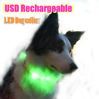 LED Dog Collar – USB Rechargeable with Water Resistant Flashing Light