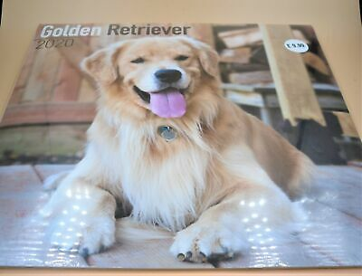 Golden Retriever Dog Show 2019 A5 Week Per View Diary by Curiosity Crafts