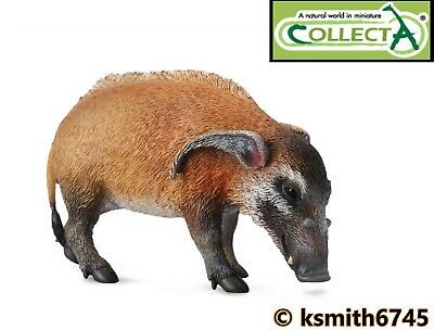 NEW CollectA CAPYBARA solid plastic toy wild zoo American animal rodent