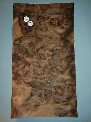 CONSECUTIVE SHEETS OF AMERICAN BURR WALNUT VENEER 22 X 33 cm AW#206 DASHBOARD