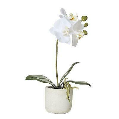Artificial Silk Butterfly Orchid Plant In Ceramic Pot - White (Style 2)