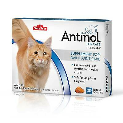 Antinol® for Cats - joint health care capsules - buy from the manufacturer