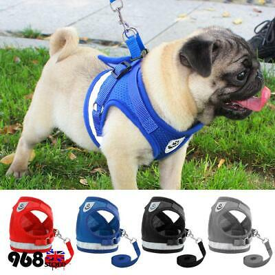 Dog Cat Leash Harness and Walking Leads Set Small Puppy Pet Breathable Mesh Vest
