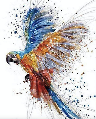 PARROT BIRD Paint By Number Kits Oil Painting Canvas DIY Craft Home Decor Gift