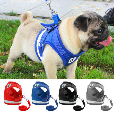 Small Dog Cat Harness and Walking Leads Set Pet Puppy Breathable Nylon Mesh Vest