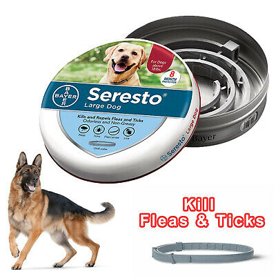 Bayer Seresto Flea and Tick Collar for Large Dogs over 18 lb 8 Month Protection