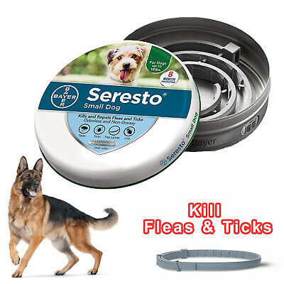 Bayer Seresto Flea and Tick Collar for Small Dog up to 18lbs -8 Month Protection