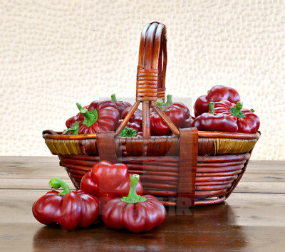 Sweet Red Pepper 'Topepo Rosso'  - Tasty Popular Vegetable Seeds