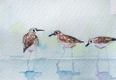 original watercolor painting ACEO sandpipers wading birds seashore beach by SIBY