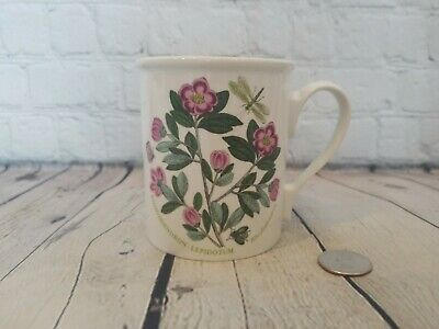 Portmeirion Botanic Garden Breakfast Mug Butterfly Back Rhododendron Coffee Cup