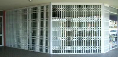 Steel Trellidor Commercial Security Grill