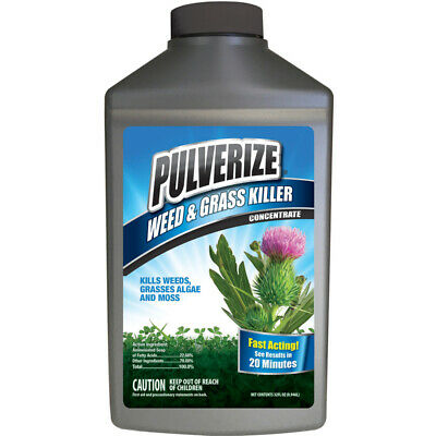 Pulverize Weed and Grass Killer Concentrate 32 oz. (Pack of 6)