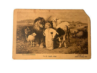 "Young Messiah With Animals ""Hevrat Lebanon"" Israel Postcard Antique"