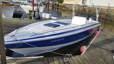 Chris Craft Scorpion 313 CC with Twin 250 Yamaha Outboards