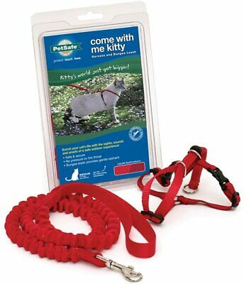 NEW PetSafe Come With Me Kitty Harness and Bungee Leash Medium RED CRANBERRY