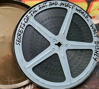 Walt Disney, Secrets Of The Ant And Insect World, 16Mm Col And Sound, Technicolo