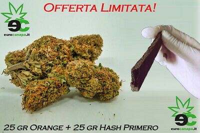 Orange Skunk + Fumo Light -  HASH - 100% ERBA LEGALE - INDOOR - CHARAS - BUD