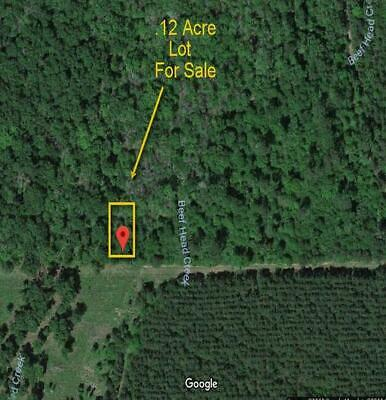 County LOT near Trinity River-  Cleveland TX Lot * RV OK - No Reserve - Bid Wins