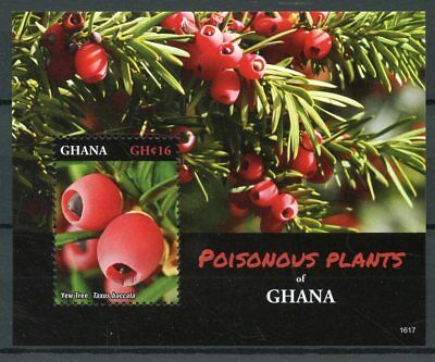 Ghana Stamps 2016 MNH Poisonous Plants Yew Tree Trees Nature 1v S/S I