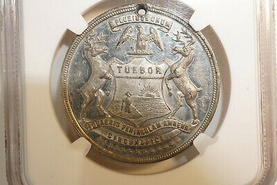 1896 Fort Shelby Michigan Centennial Medal Hk-130 At Least Rarity 6