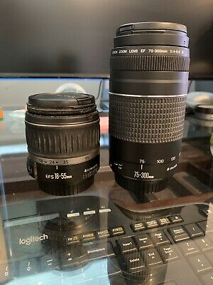 Canon EF 75-300mm f/4-5.6 III Telephoto Zoom Lens for Canon SLR 18-55mm