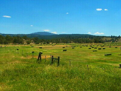 NATURAL  One-acre DREAM LAND MODOC COUNTY