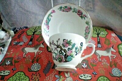 Argyle/Royal Burlinton  Cup And Saucer... Retro/Vintage...vgc
