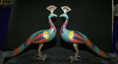 "13.6"" Old Tibet Bronze turquoise Coral Peacock peafowl Pavo Bird Statue Pair"
