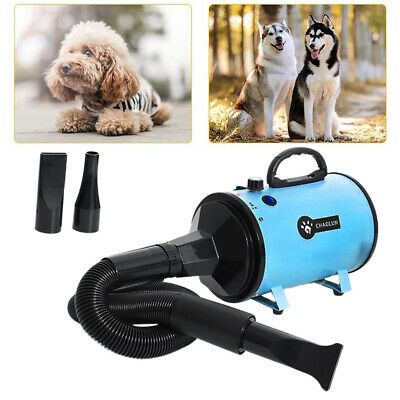 Ad alta Velocità a Velocità Regolabile Pet Dog Grooming Hair Dryer Blower con