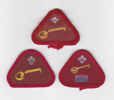 BRITISH SCOUTS BLANK MULTI SCOUT INSTRUCTOR PROFICIENCY BADGE 1980/'s UK
