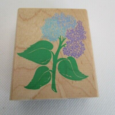 Posh Palmer Parrot Rubber Stamp from Posh Impressions RubberStampede