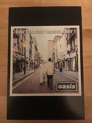 oasis (What's The Story) Morning Glory ? 1995 album original postcard flyer