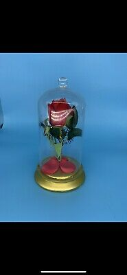beauty and the beast rose in glass Light