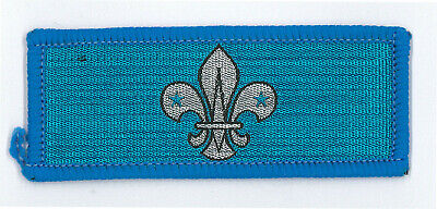Master GSM Metal Hat Plume Extinct 1990/'s HONG KONG SCOUTS Group Scout Leader