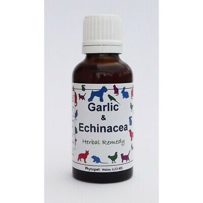 Phytopet Herbal Remedies Garlic & Echinacea 30ml Dog Cat