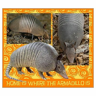 HOME IS WHERE THE ARMADILLO IS Refrigerator Magnet