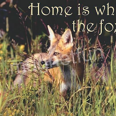 HOME IS WHERE THE FOX IS - New Refrigerator Magnet