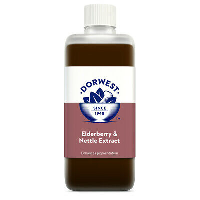 Dorwest Herbs Elderberry & Nettle 500ml dog cat supplement