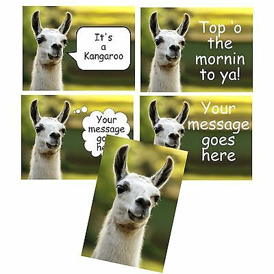 Talking or Thinking Llama Fridge Magnet New Customized