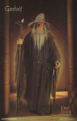 Lord Of Rings ~ Fellowship ~ Gandalf Solo ~ Movie Poster
