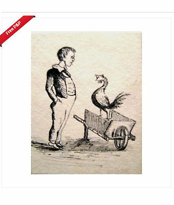 An Intriguing Miscellany Boy Cockerel Ink C1830-1920