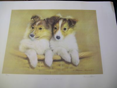 Two of a Kind by Thomas Newman Signed Artist T Newman