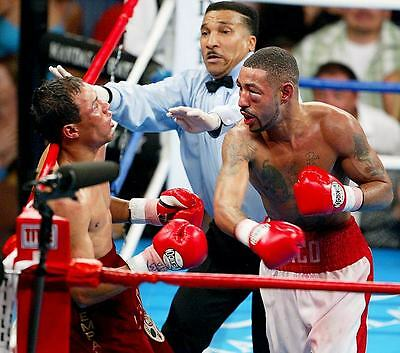 "Diego ""chico"" Corrales Luis Castillo Boxing 8X10 Photo"